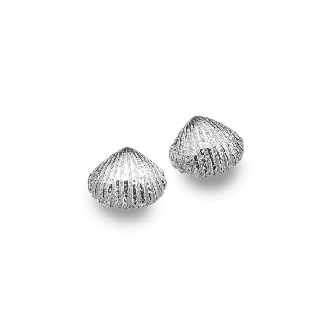Scallop Shell Stud Earrings In Sterling Silver
