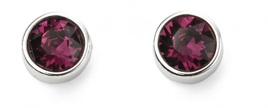 Sterling Silver February Birthstone Stud Earrings