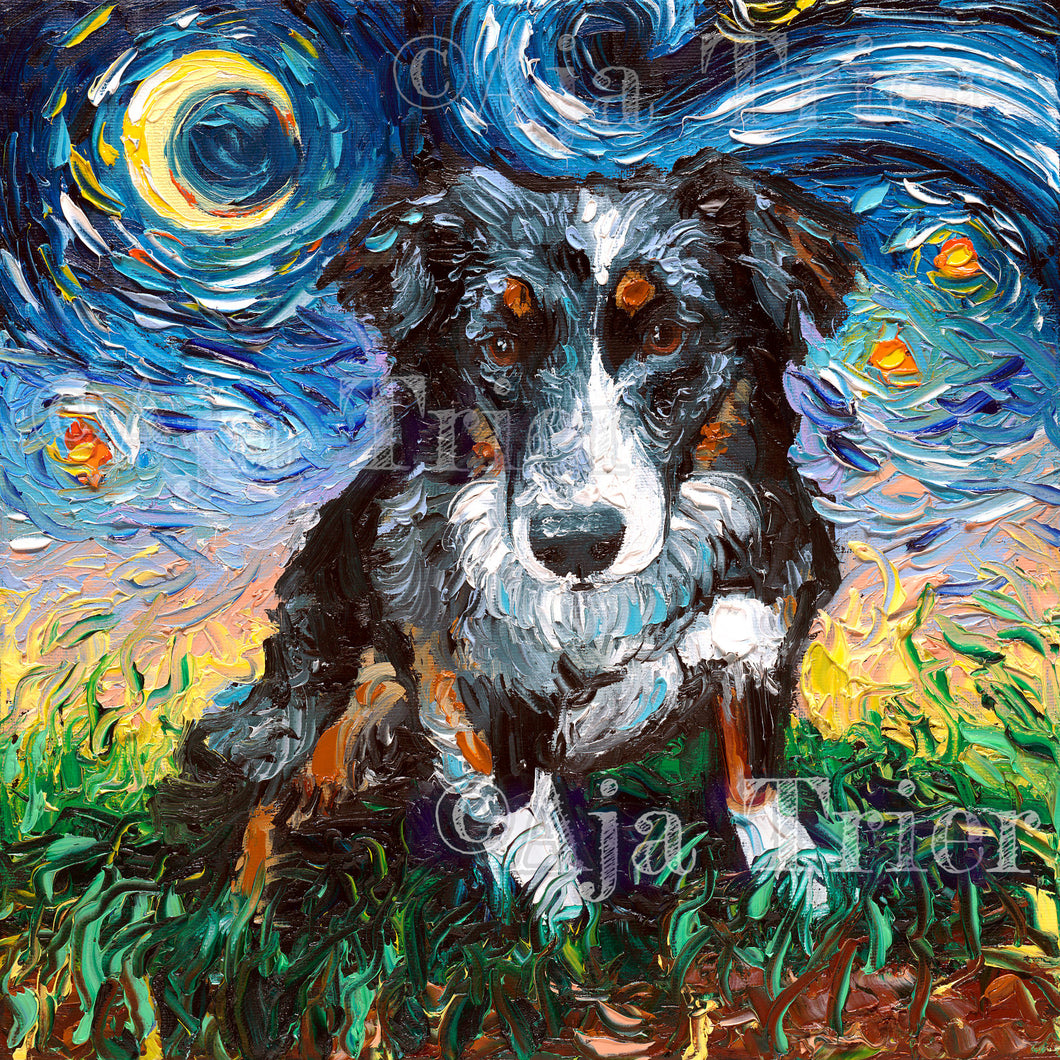 Australian Shepherd Night Canvas Print