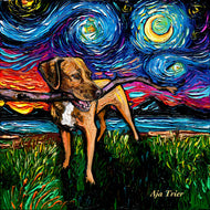 Vizsla Mix Night Canvas Print