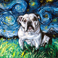 English Bulldog Night Canvas Print