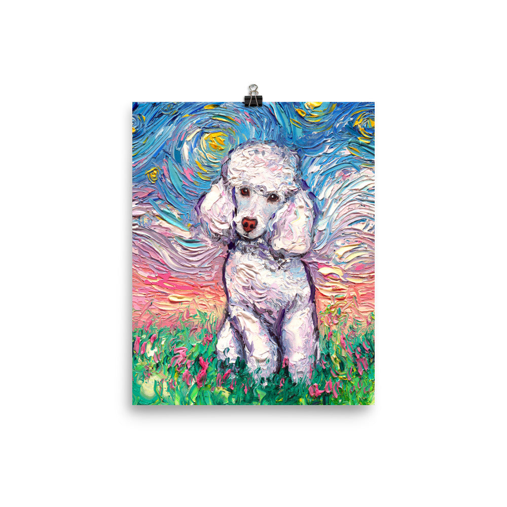 Poodle Night, White Toy, Matte Poster Print
