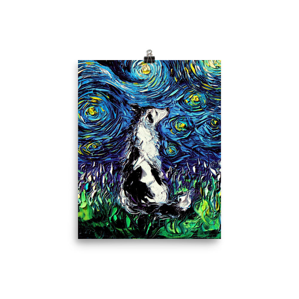 Border Collie, Matte Poster Print