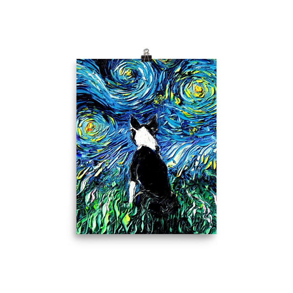 Boston Terrier Night, Matte Poster Print