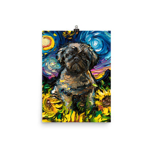 Shih Tzu and Sunflowers, Matte Poster Print