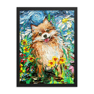 Pomeranian - Happy Framed Print