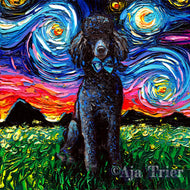 Poodle Night, Black Canvas Print