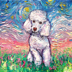 Poodle Night, White Canvas Print
