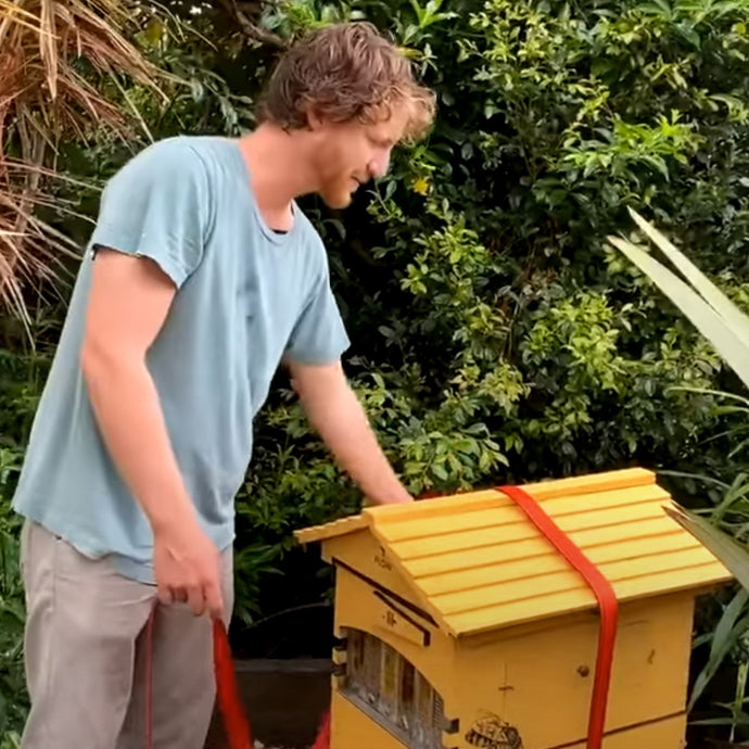 How to Secure Your Flow Hive During Extreme Weather