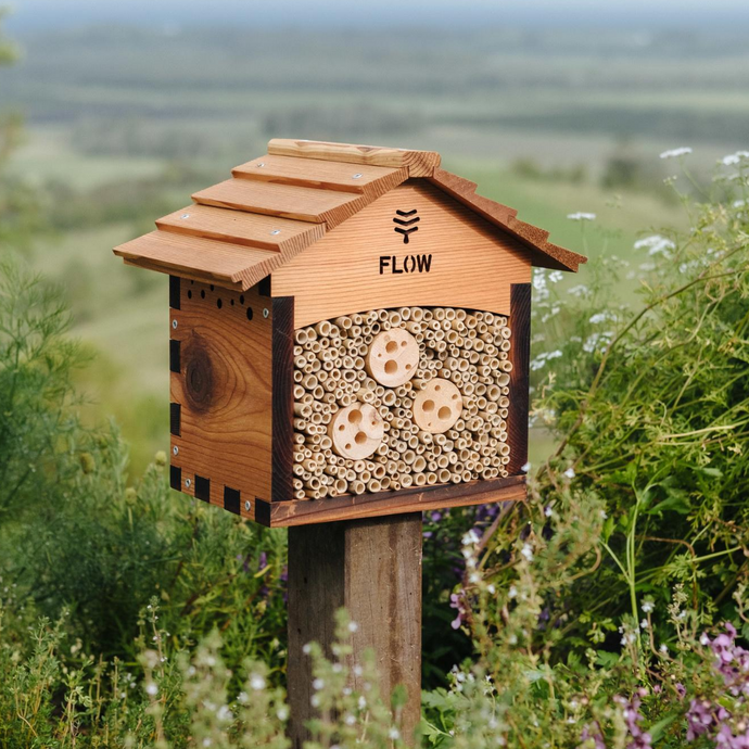 What is the pollinator house?