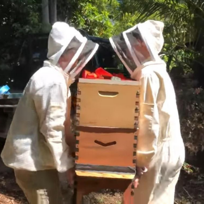 How to move a bee hive (short and long distances)