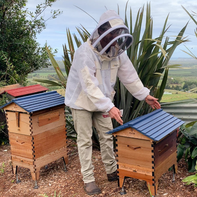Why two hives are better than one