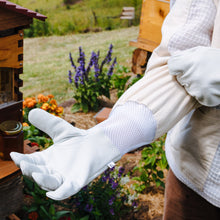 Load image into Gallery viewer, Premium Beekeeping Gloves