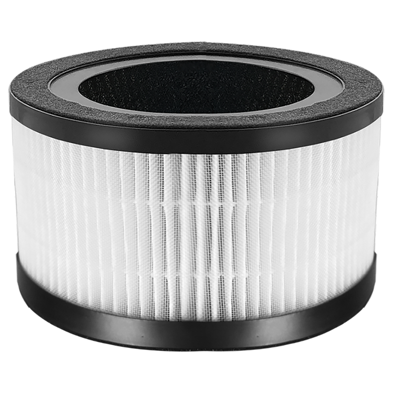 H13 HEPA Replacement Filter ( for FYP201 )