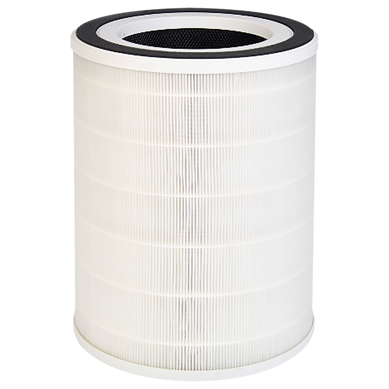 H13 HEPA Replacement Filter ( for FYP401)