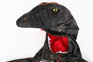 Dinosaur Costume- Toddler Boy (3T)