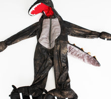 Load image into Gallery viewer, Dinosaur Costume- Toddler Boy (3T)