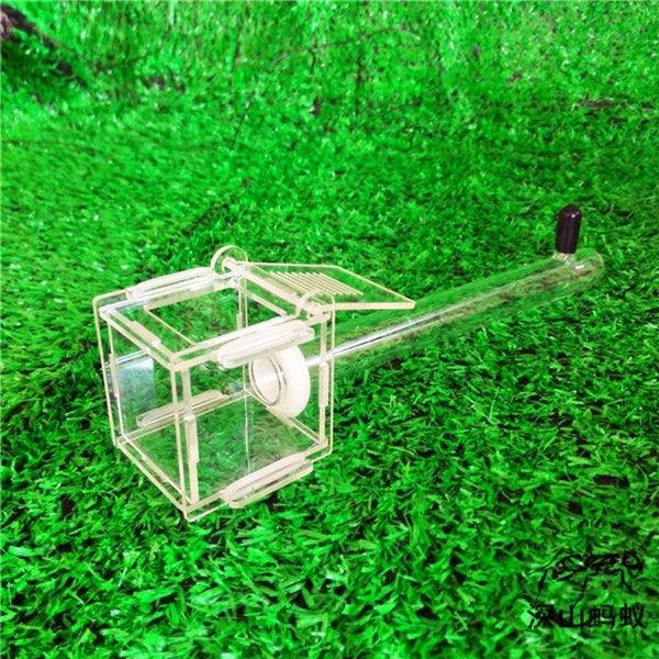 Ant Nest Glass Tube Mini Ant Nest with Active Zone Insect House Acrylic Ant Farm RZE