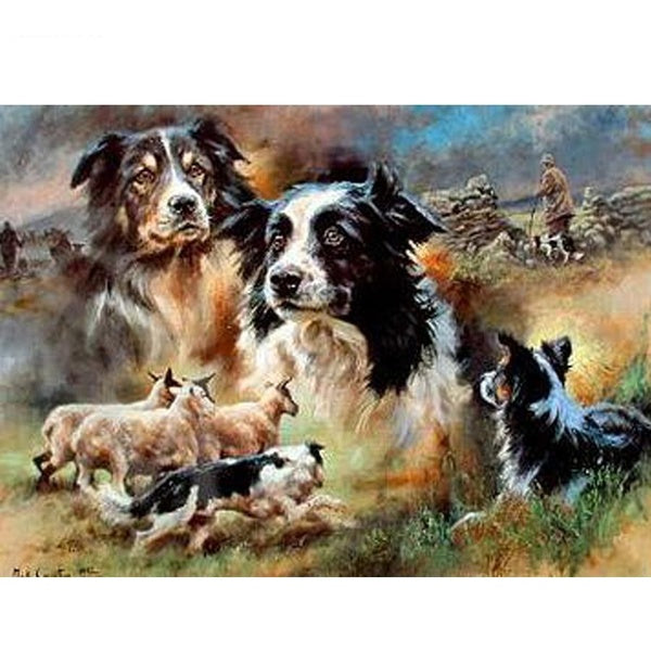 5d Diamond Embroidery Animal Border Collie DIY Diamond Painting Embroidery Cross Stitch