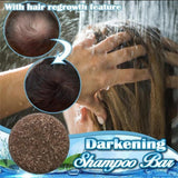Natural Essence Unisex Home Hair Cleansing Loss Scalp Care Darkening Shampoo Bar