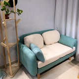 Economic Luxury Simple Small Sofa - TRUTAI