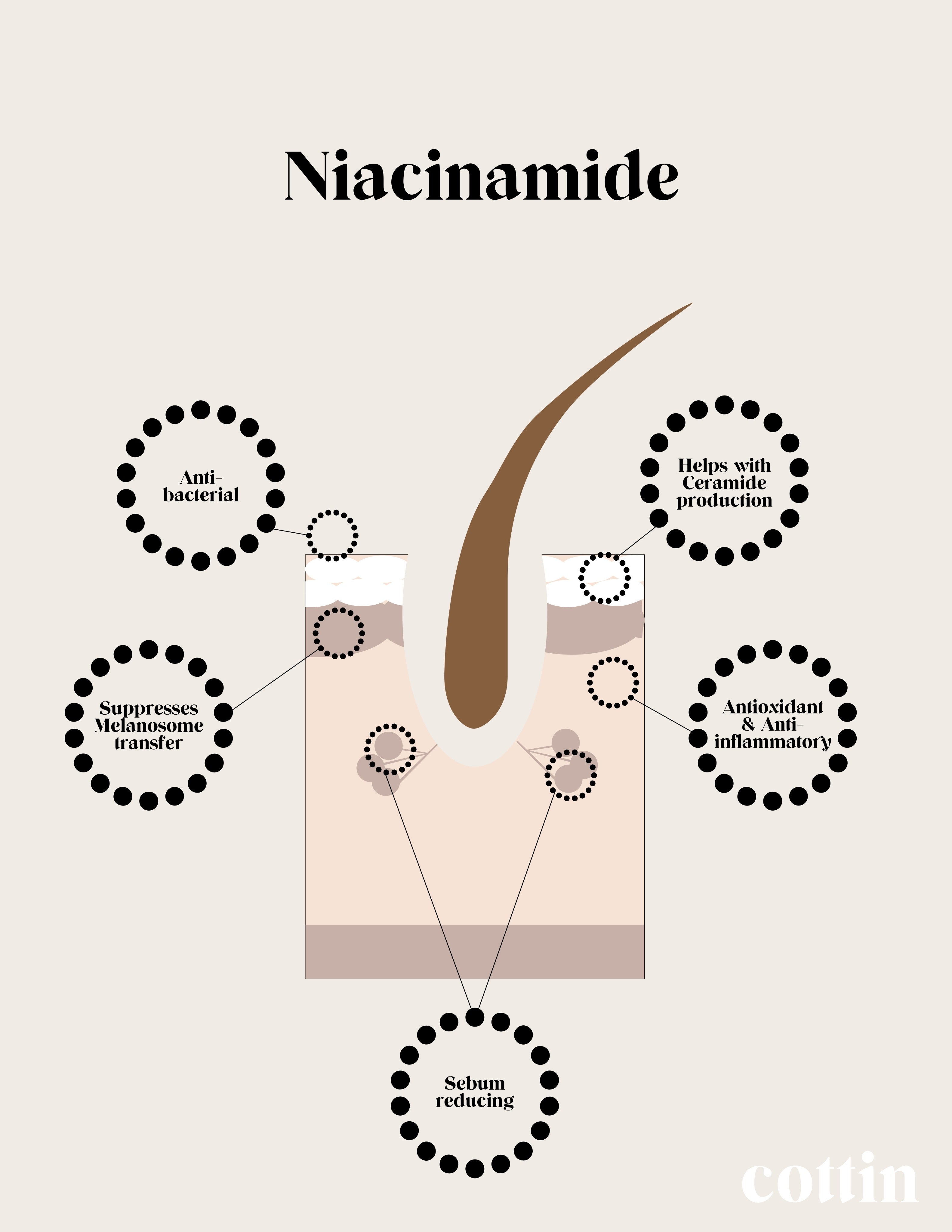 cottin beauty skincare niacinamide