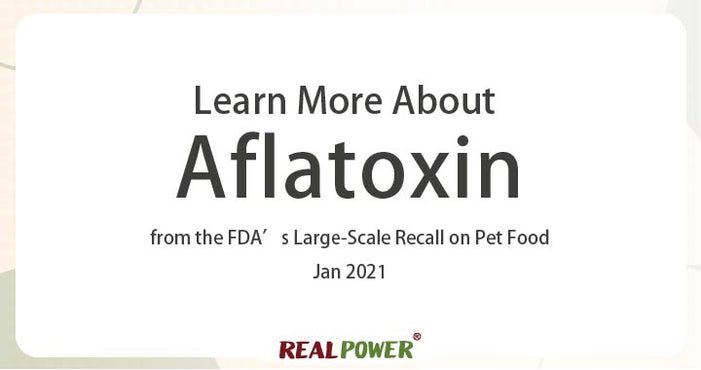 Learn More About Aflatoxin from the FDA's Large-Scale Recall on Pet Food
