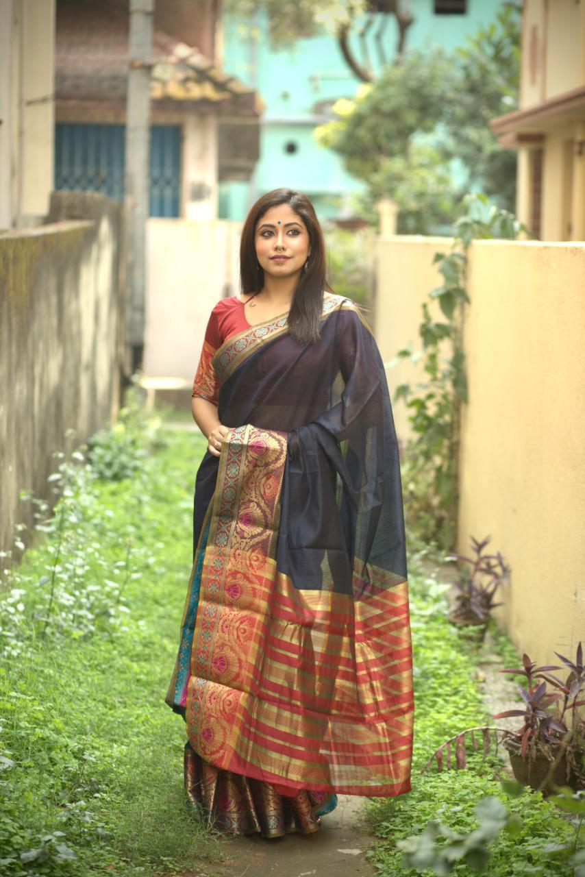 Blue Cotton Silk Saree With Jacquard Weaving