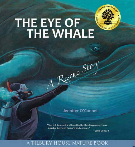 The Eye of the Whale | Jennifer O'Connell