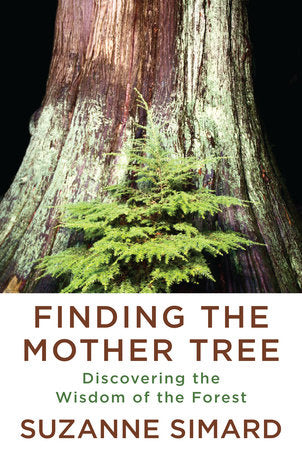 Finding the Mother Tree | Suzanne Simard