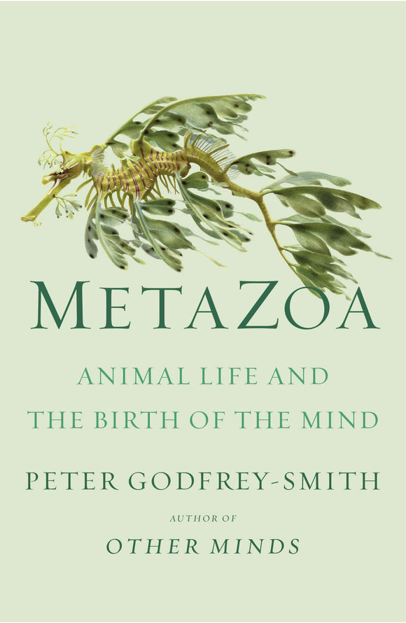 Metazoa | Peter Godfrey-Smith