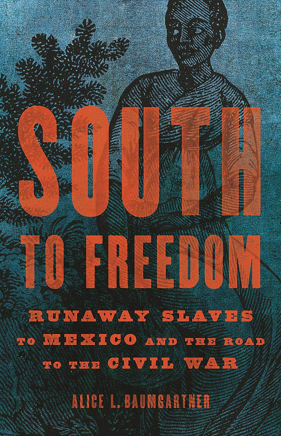 South to Freedom | Alice L. Baumgartner