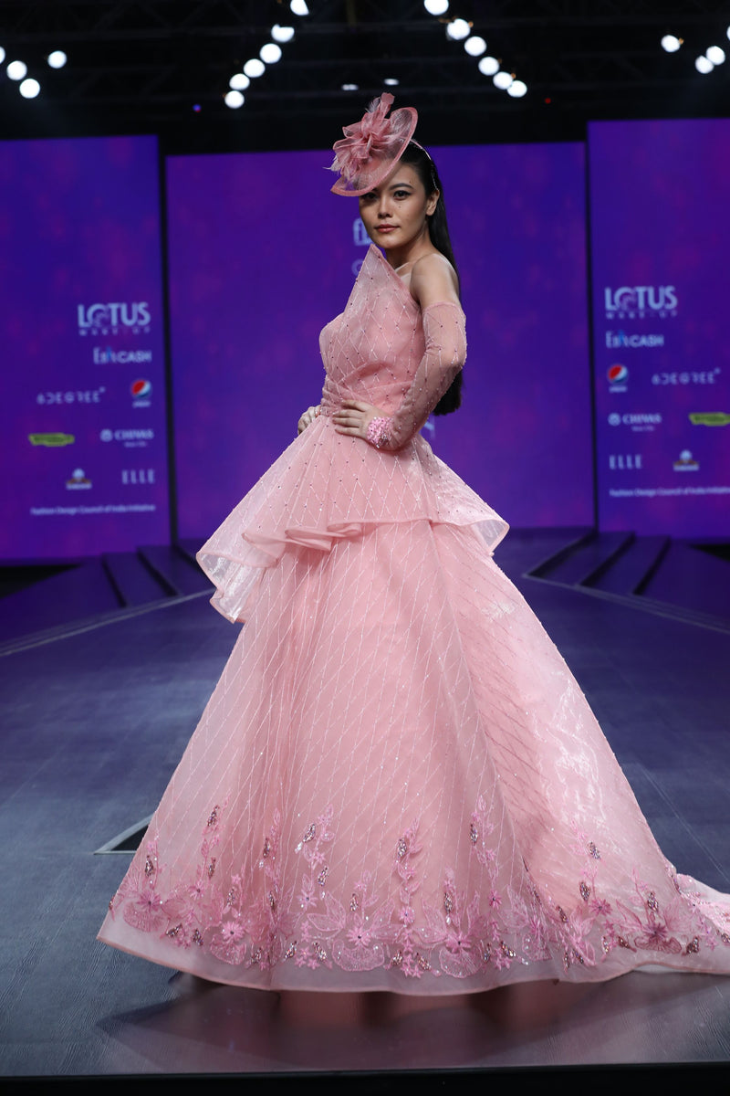 Amit GT - Light pink ball gown with bird motif