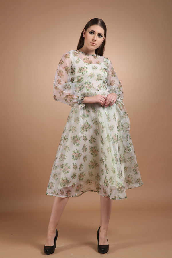 Bhagyashree Singh Raghuwanshi - Printed Organza Dress