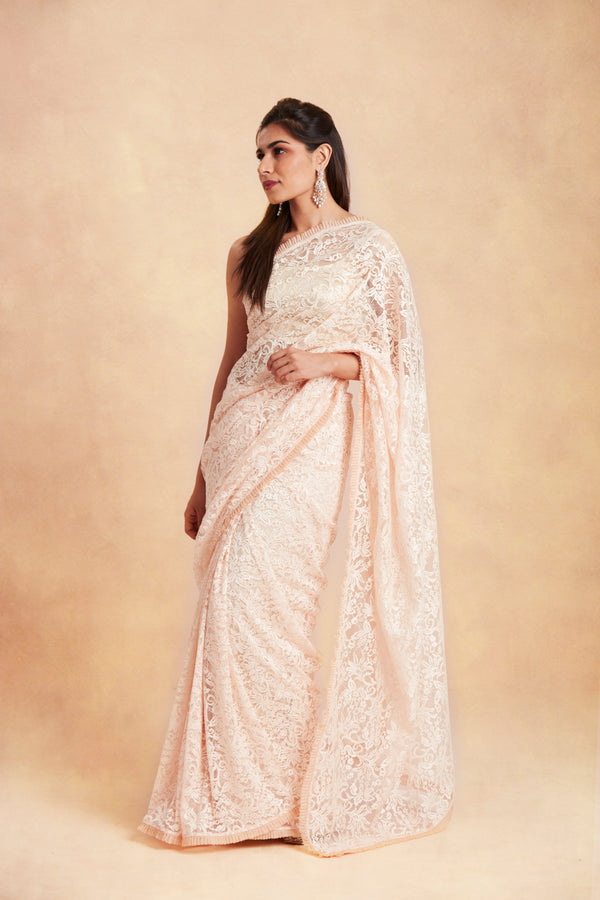 Sanjhana Reddy - Nude Lace saree