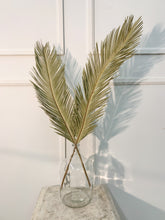Load image into Gallery viewer, Sago Palm Leaves