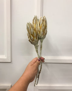 Protea Flower (Pack of 3)