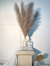 Load image into Gallery viewer, Earl Grey Pampas Grass