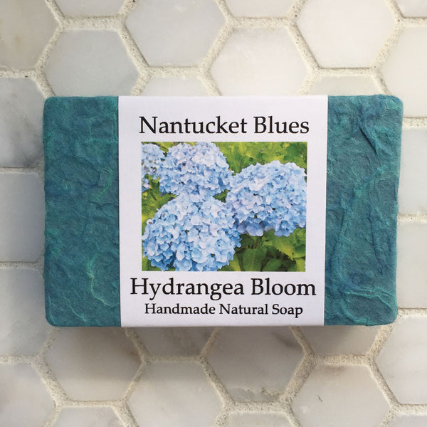 Nantucket Blues Hydrangea Bloom