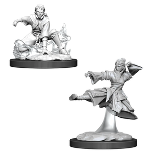 D&D Figure: Female Human Monk