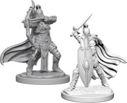 Pathfinder Figure: Female Knights Gray M