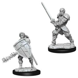 D&D Figure: Male Human Fighter
