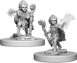 Pathfinder Figure: Gnome Male Druid