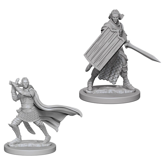 Pathfinder Figure: Elf Male Paladin