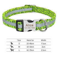 Personalized Dog Collar With Engraved ID Tag