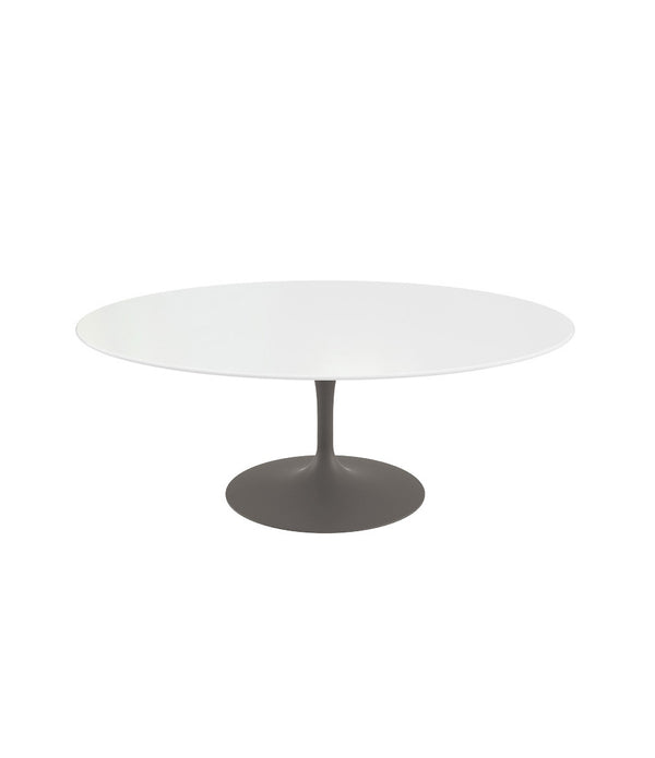 Saarinen Oval Coffee Table - Grey Base