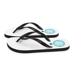 Flip-Flops Dolphin and You