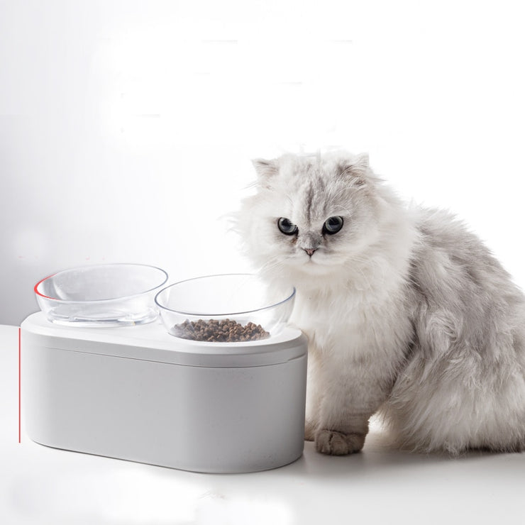Pet Double Bowls large spaces Food Water Feeder PS Resin Cat food bowl Dogs puppies cats pet supplies feeding utensils products