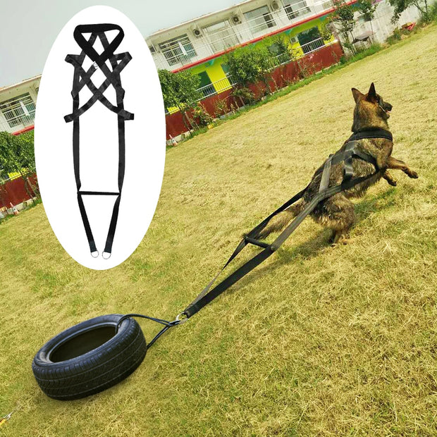 Dog Training Product Supplier Toys K9 Dog Treats Trainer Pet Accessories Adjustable for Medium Large Dogs German Shepherd