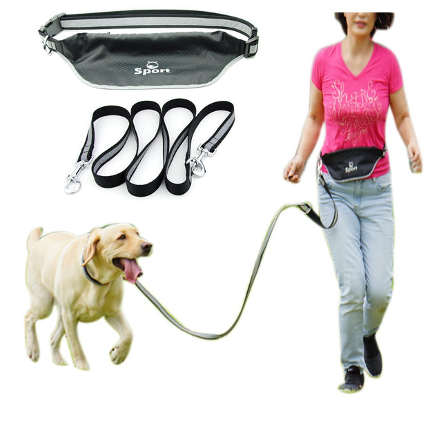Dog Double Pet leash with Waterproof Pocket Waist Belt for Running Jogging Sport Trainning Reflective Stripe Hand Free for Dogs